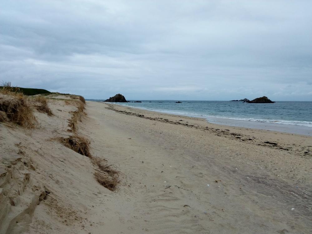 Dune de la pointe d'Ental (Ile de Houat)